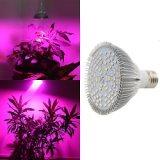 卓越的植物补光灯厂家就是朗文科技_植物补光灯厂家哪里有