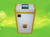 梅河口智能电锅炉hx40kw水电分离安全环保美观省心
