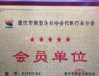 重庆公司注册,代理记账,乱账清理,解决疑难专业高效
