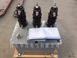油浸式高压计量箱JLS-10现货