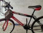 九程新凤凰自行车