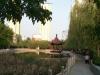 衡水-五洲国际官邸2室2厅-800元
