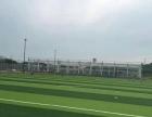 大连南关岭致纯足球基地