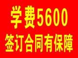 上海嘉定江桥临洮路附近驾校 不限学时 随到随学