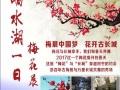 妇女节响水湖长城梅花展