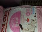 厂家直销 批发各种猫粮 量大优惠