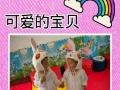 聊城智星幼儿园招生常年招收0至6岁宝宝