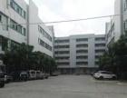 福永新和大和工业区楼上带装修500平米厂房便宜出租