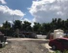 出租金阳新区金阳客车站场地上麦收费站出口