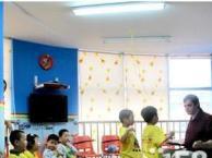 迪迪龙英语学校暑假班报名中(全外教小班授课)
