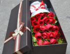11朵红玫瑰花束+配草+精美包装65元