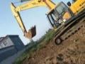 三一重工 其它三一重工型号 挖掘机         (急售三一2