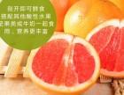 佛山加盟百森水果技术
