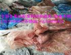 青岛求购硅胶废料厂家食品硅胶废料枣庄液体硅胶回收公司