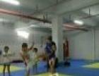武术搏击舞蹈新学期招生1280特价1080一学期