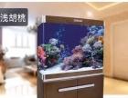 豪门水族店主营品牌水族箱,观赏鱼,和水族器材批发