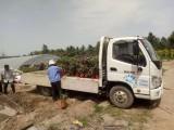石家庄4.2米货车出租出租货车 可长途