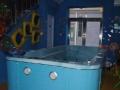 婴幼儿游泳馆加盟 娱乐场所 投资金额 5-10万元