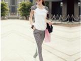 2014新款夏季休闲套装女装时尚韩版修身短袖细条纹套装夏装