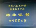 拿文凭就选青白江四川农业大学