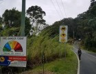 新西兰澳大利亚免雅思-雇主直招担保工作签-出国劳务
