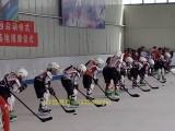 **北京学校建仿真冰场工厂科诺仿真冰