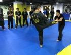 健身格斗 武术段位考试 泰拳 摔跤