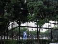 华侨城 77方温馨两房全新装修家私家电齐全业主诚意出售68万