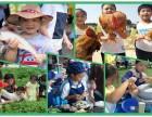 深圳农家乐亲子游绿色草坪团体活动及户外野炊大体验