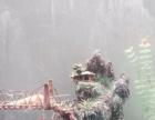 森森水族箱1.5米