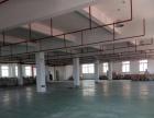 (精品)钟埭开发区,产证齐全,1000平方厂房出租
