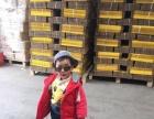 华山 工业北路,菜园工业园 厂房 180平米