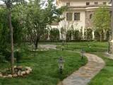 昌平庭院绿化设计施工 铺装硬化 草坪月季树木种植