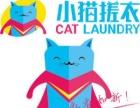 小猫搓衣加盟 干洗 投资金额 1-5万元