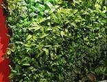 济宁地产仿真植物墙