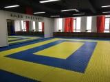 星沙松雅湖華潤置地廣場附近哪里學跆拳道 散打 泰拳 女子防身