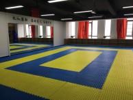 星沙松雅湖华润置地广场附近哪里学跆拳道 散打 泰拳 女子防身