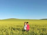 夏季旅游佳选择 呼伦贝尔大草原 忠山车队让你全程无忧