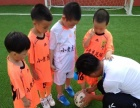 华南小老虎足球俱乐部儿童足球训练班,免费试听,新场地免费停车