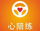 上海自带车司机陪练员招募7年驾龄