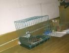 全新狗笼子转让出售