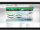 高端精美网站建设、微信建设、APP开发【龙睿网络】