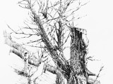 广州学画画 美术画室 寒暑假美术 学油画彩铅找名玛雅