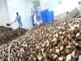 养殖白玉蜗牛 走发家致富之路 保技术 保