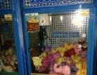 七台河回收大型游戏机动漫城