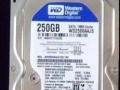 250G 7200转硬盘