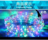 LED圆二线彩虹管灯带