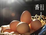 广东孕妇怀孕就吃万家益叶酸月婆蛋土鸡蛋