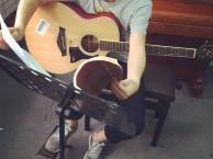 白石洲哪里有吉他培训班,吉他培训学吉他哪家好?