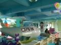 室内儿童主题乐园加盟 选择佳贝爱 亲子游乐设备